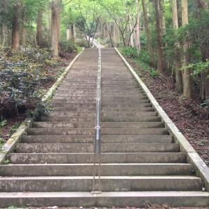 【保存版】熊本ランニングトレーニングスポット4選