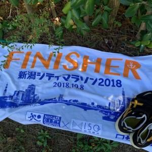 新潟シティマラソン2018。腹痛と暑さでキレイに撃沈。