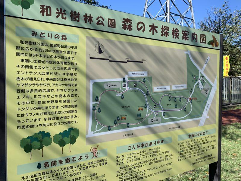和光樹林公園 森の木探検案内図